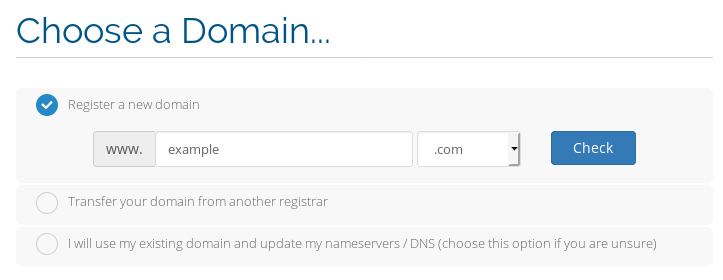 Registering the domain example.com in the checkout.