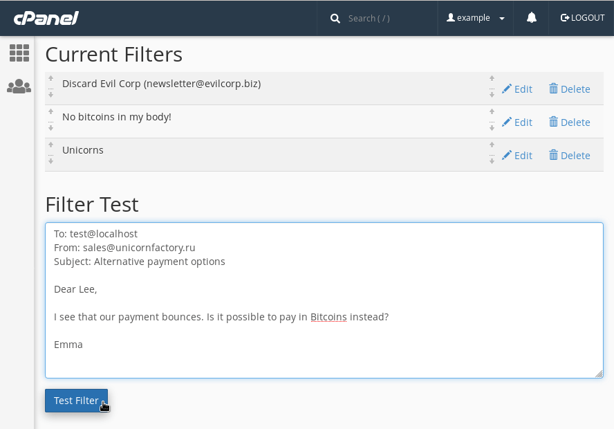 "Testing an email filter via cPanel's ""Filter Test"" function."